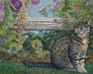 Sparky the cat watercolor painting category image