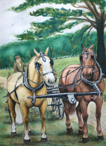 Carriage horse watercolor painting
